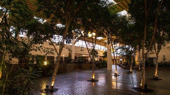 Concord, CA: Atrium