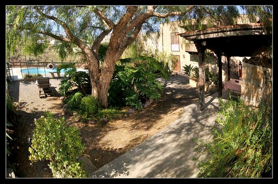 Casa La Venta: jardín