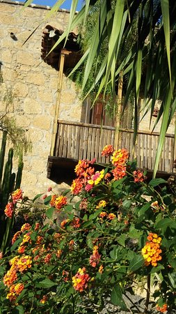 Casa La Venta: fachada al jardín