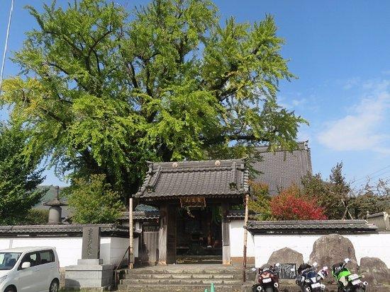 Myogyo-ji Temple
