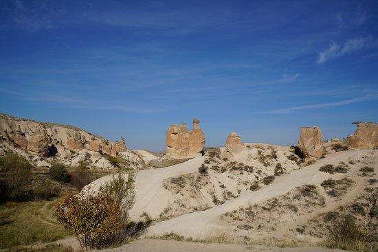 Camel - Picture of Camel Rock, Goreme - TripAdvisor