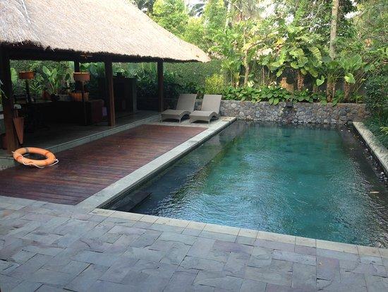 private pool bild von kayumanis ubud private villa spa ubud