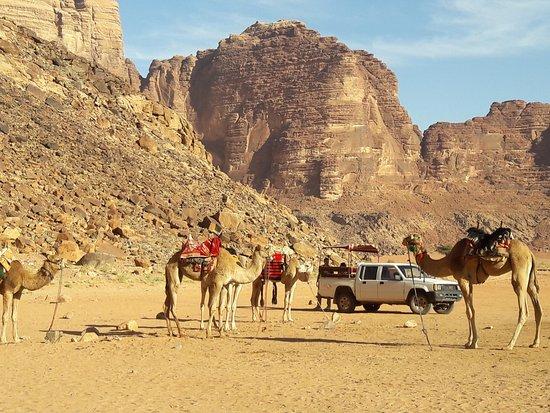 وادي رم الصحراء للسياحة