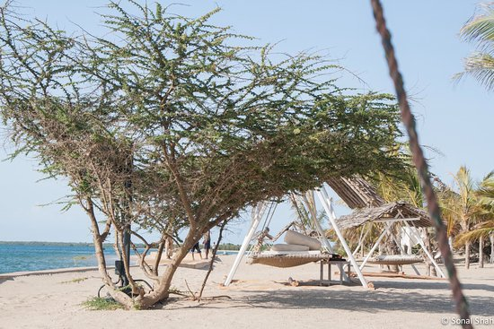 The Majlis Hotel: Must experience hammock after lunch for a snooze