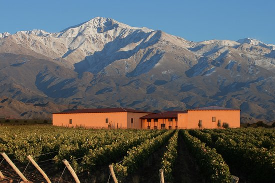 Tunuyan, Argentina: Bodega Cuvelier Los Andes