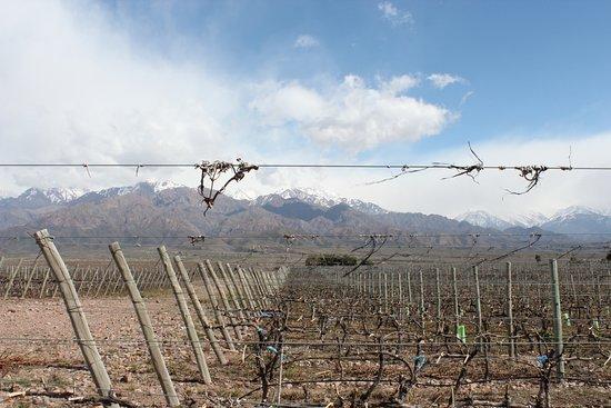 Tunuyan, Argentina: Una vista del Clos en invierno