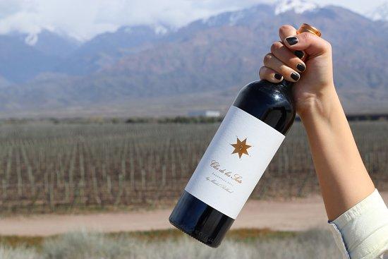 Tunuyan, Argentina: El vino: Clos de los Siete