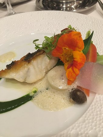 The Fine Sea Bass At Terrace Restaurant Benesse House