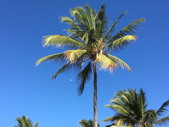 Breezes Beach Club Spa Zanzibar Picture Of