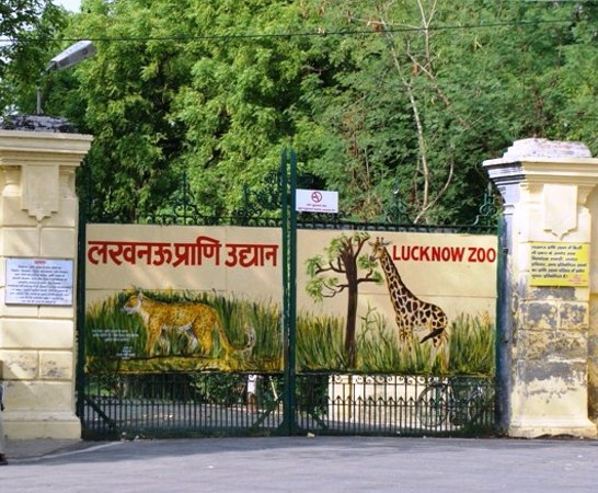 Nawab Wajid Ali Shah Zoological Garden Lucknow - 2019 What