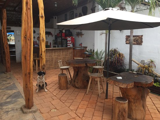 Big Ralph's Hostal: Room #3 - lovely courtyard and sweet dog living on site