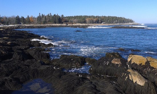 Georgetown, ME: Sitting on the rocks at Reid.