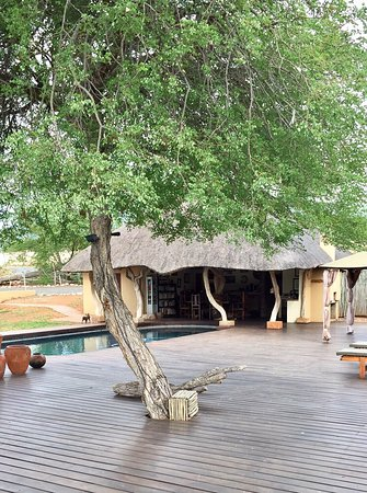Muweti Bush Lodge: photo9.jpg