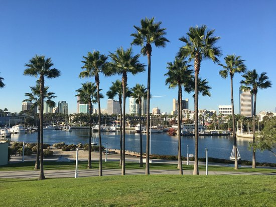 Things To Do Around Long Beach Convention Center
