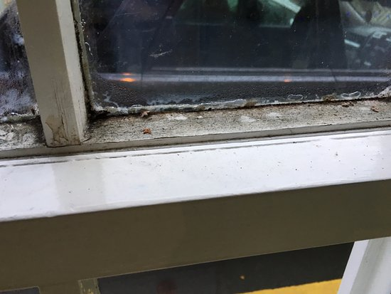 Redesdale Arms Hotel: Dirty window frames
