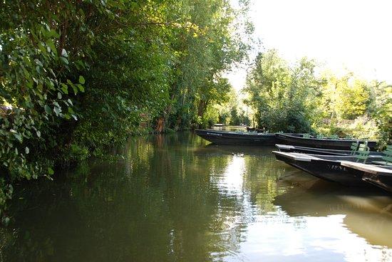 Arcais, France: balade dans les canaux à Arçais
