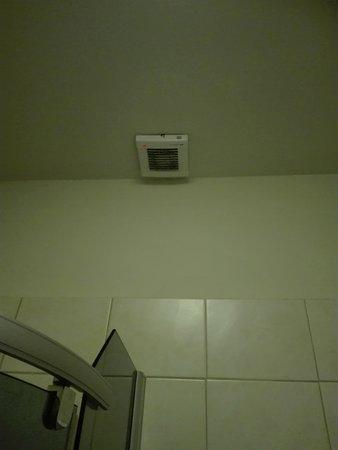 Hotel Elit: fan