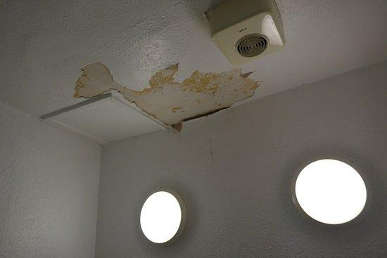 Queensbridge Hotel: Bathroom ceiling (room 20)