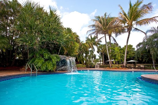 Holiday inn ft lauderdale airport updated 2017 prices hotel reviews hollywood fl for Hotel shambala swimming pool price