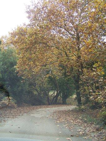 Kiato, Grecia: Η διαδρομή.