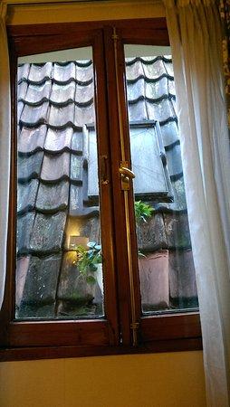 Atlanta Hotel: Stunning window view of a roof!