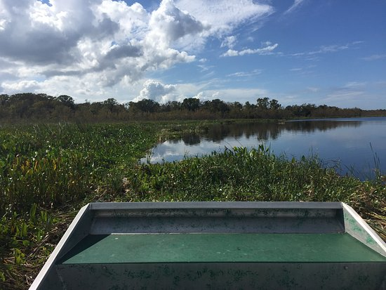 DeLand, FL: The airboat will just skim over the grass!
