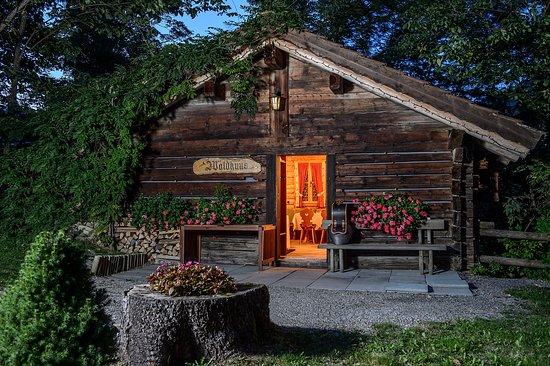 Park Gstaad: Chalet Wadlhuus
