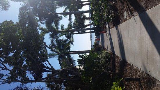 Port Saint Lucie, FL: 20161110_090700_large.jpg