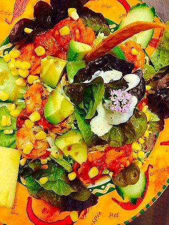 CACTUS : Salade crevettes