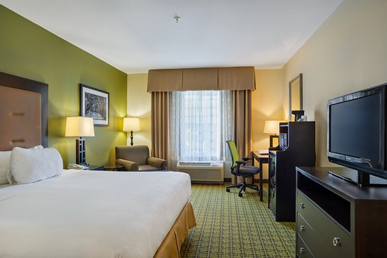 Holiday Inn Express Hotel & Suites Savannah-Midtown: Standard King Bed Room