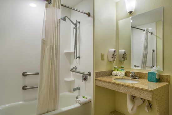 Holiday Inn Express Hotel & Suites Savannah-Midtown: Accessible Bathroom