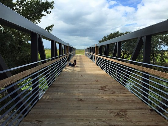 Ocklawaha, FL: Hottie on the bridge