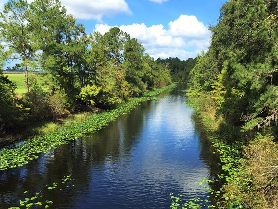 Ocklawaha River north