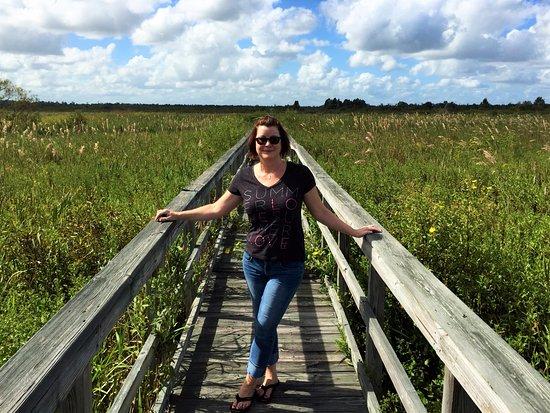 Ocklawaha, FL: Beauty surrounded by beauty
