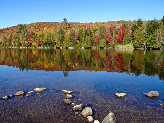 Groton, VT: At the End of a Narrow Peninsula, Crystal Water & Lovely Foliage