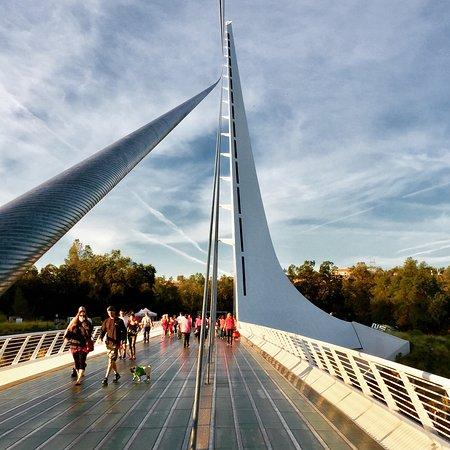 Sundial Bridge: photo3.jpg