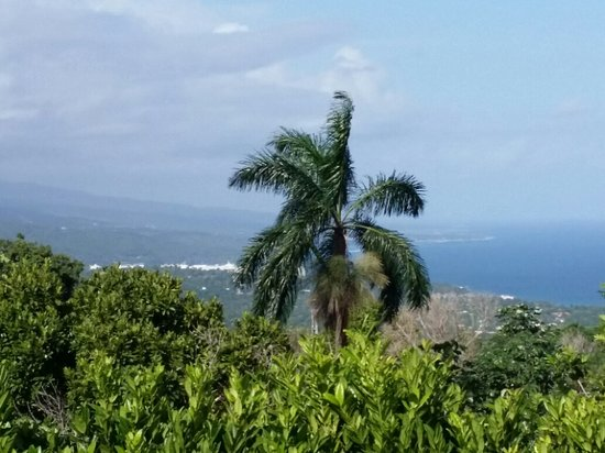 Tower Isle, Jamaica: Amazing view