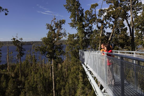 Hokitika, New Zealand: Westcoast Treetop Walk