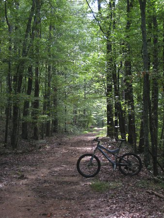 Oak Mountain State Park: Red Trail
