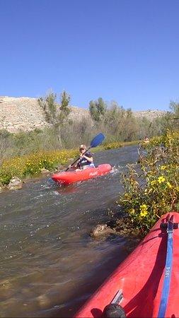 Cottonwood, Аризона: Beautiful terrain and a peaceful river.