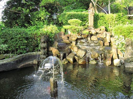 Cintai Corito's Garden Foto