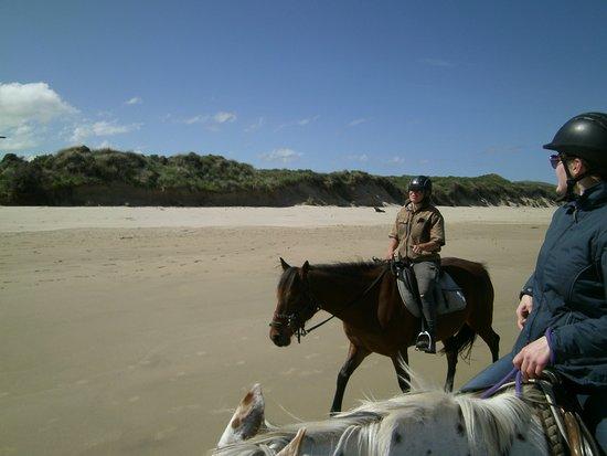 Owaka, Nueva Zelanda: ..great experience..