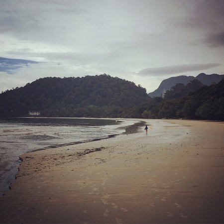 "The Datai Langkawi: Our son enjoyed the ""fishing"" expedition with Jonathan, the resident marine biologist"