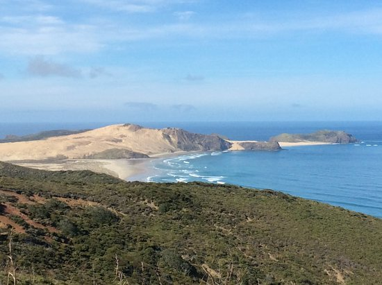 The trip up to Cape Reinga from Mangonui