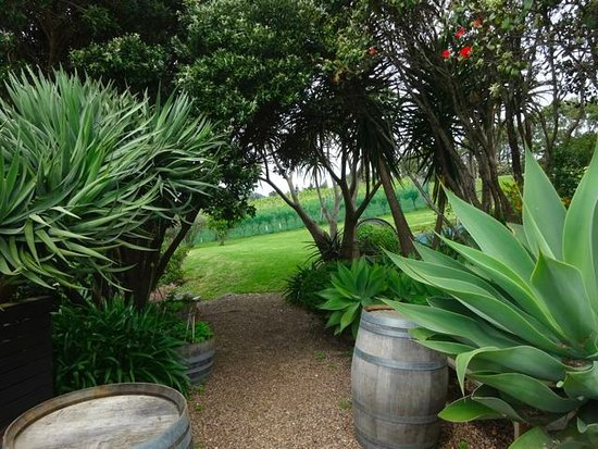 Waiheke Island, New Zealand: A view from the Tasting Area.