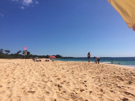 Oneloa Beach : photo1.jpg