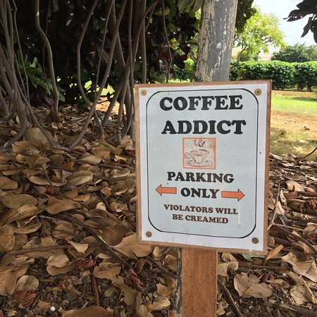 Kalaheo, Hawái: PARKING SIGNS