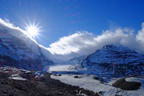「columbia glacier Discovery centre」の画像検索結果