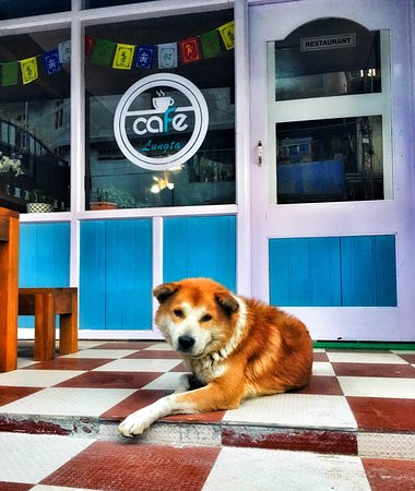 Bomdila, India: Cafe at Lungta Residency