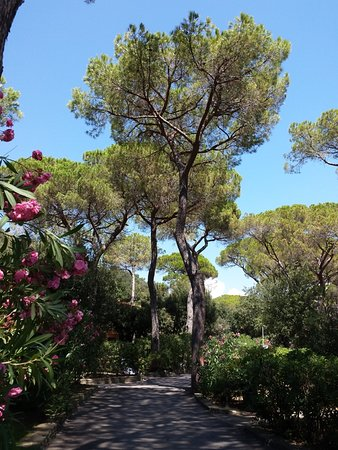 Изображение Hotel Residence Roccamare